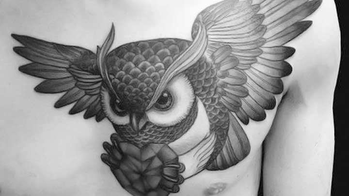 Tatuajes de buhos: 🦉 Significado, imágenes, diseños y más