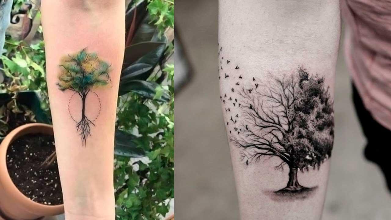 Tatuajes de árboles 🌳 Significado y mejores diseños ✅